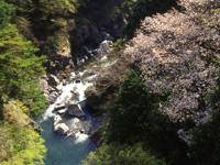 鳩の巣渓谷・写真