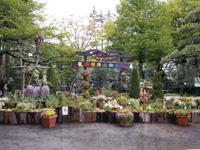 羽村市動物公園・写真