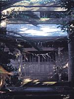 稲根神社・写真