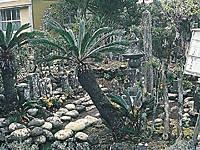 宇喜多秀家の墓・写真