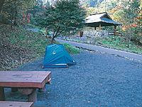 山のふるさと村キャンプ場・写真