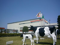 森永乳業 東京多摩工場(見学)・写真