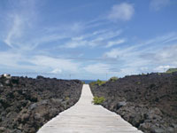 火山体験遊歩道・写真