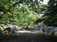 BOSCO Auto Camp Base・写真
