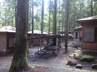 足柄森林公園 丸太の森・写真