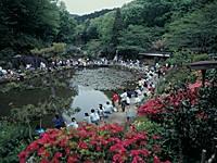 東丹沢グリーンパーク・写真