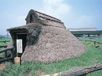 横浜市三殿台考古館