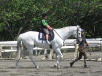 馬の博物館 ポニーセンター・写真