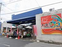 小田原さかなセンター・写真