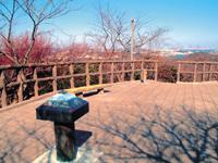 県立塚山公園・写真