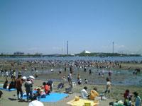 海の公園 潮干狩り
