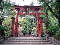 彌彦神社・写真