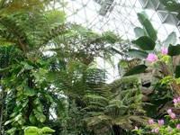 新潟県立植物園・写真