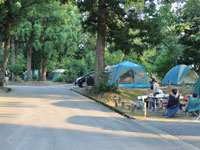 川口運動公園オートキャンプ場・写真