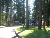 長岡市うまみち森林公園・写真