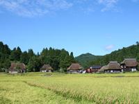 荻ノ島かやぶき環状集落・写真