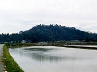 天神山城跡・写真