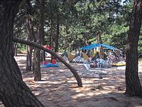 雨晴松太枝浜キャンプ場・写真
