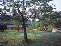 砺波市上和田緑地キャンプ場・写真
