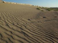 内灘砂丘・写真