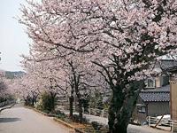 平成山代八景・写真