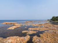赤崎海岸・写真