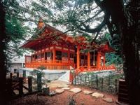 薬王院温泉寺・写真