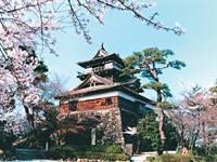 丸岡城・写真