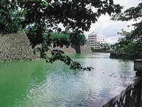 福井城跡・写真