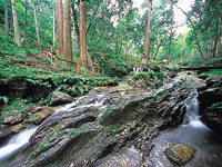 瓜割の滝・写真