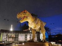 福井県立恐竜博物館・写真