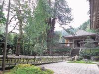 大安禅寺・写真