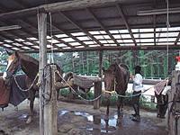ララミー牧場・写真