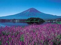 富士河口湖温泉郷・写真