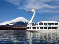 山中湖の「白鳥の湖」・写真