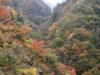 湯之奥渓谷・写真