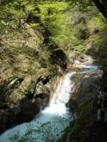 貞泉の滝・写真