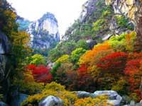 御岳昇仙峡の紅葉・写真
