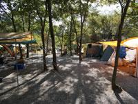 篠沢大滝キャンプ場・写真