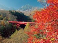 八ヶ岳高原ライン・写真