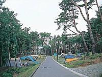 美鈴湖もりの国オートキャンプ場