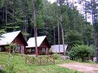 信州四徳オートキャンプ場(森林体験館)・写真