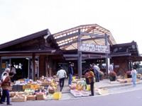 名川チェリーセンター・写真