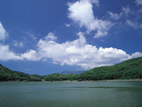 琵琶池・写真
