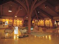 長野県美ヶ原自然保護センター・写真