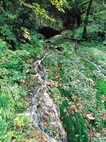 竜神の滝・写真