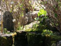 浄光寺の御霊泉・写真