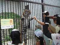須坂市動物園・写真