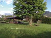 ミノワリバーサイドオートキャンプ・写真