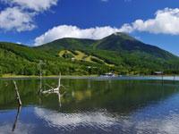 白樺高原・写真